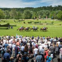 Pferderennen Schachen Aarau