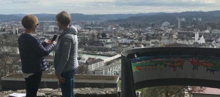 Bild Alpenzeiger Schmal
