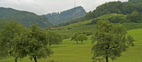 Gemeinden Kuettigen Aarau