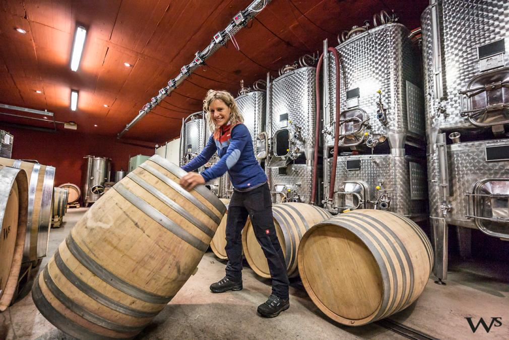 Susi Steiger-Wehrli, Wehrli Weinbau AG